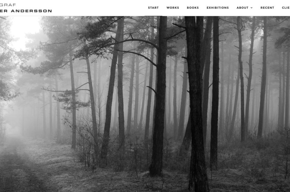 Welcome to my new website-portfolio